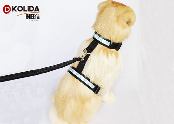 Nylon Safety Glow LED Dog Harness Glow In The Dark Dog Harness Leash